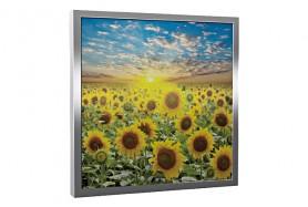 Glas-Bildheizung Flowers-Silber 300 W